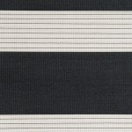 Zebra 07